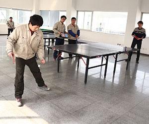 2015年乒乓球比赛